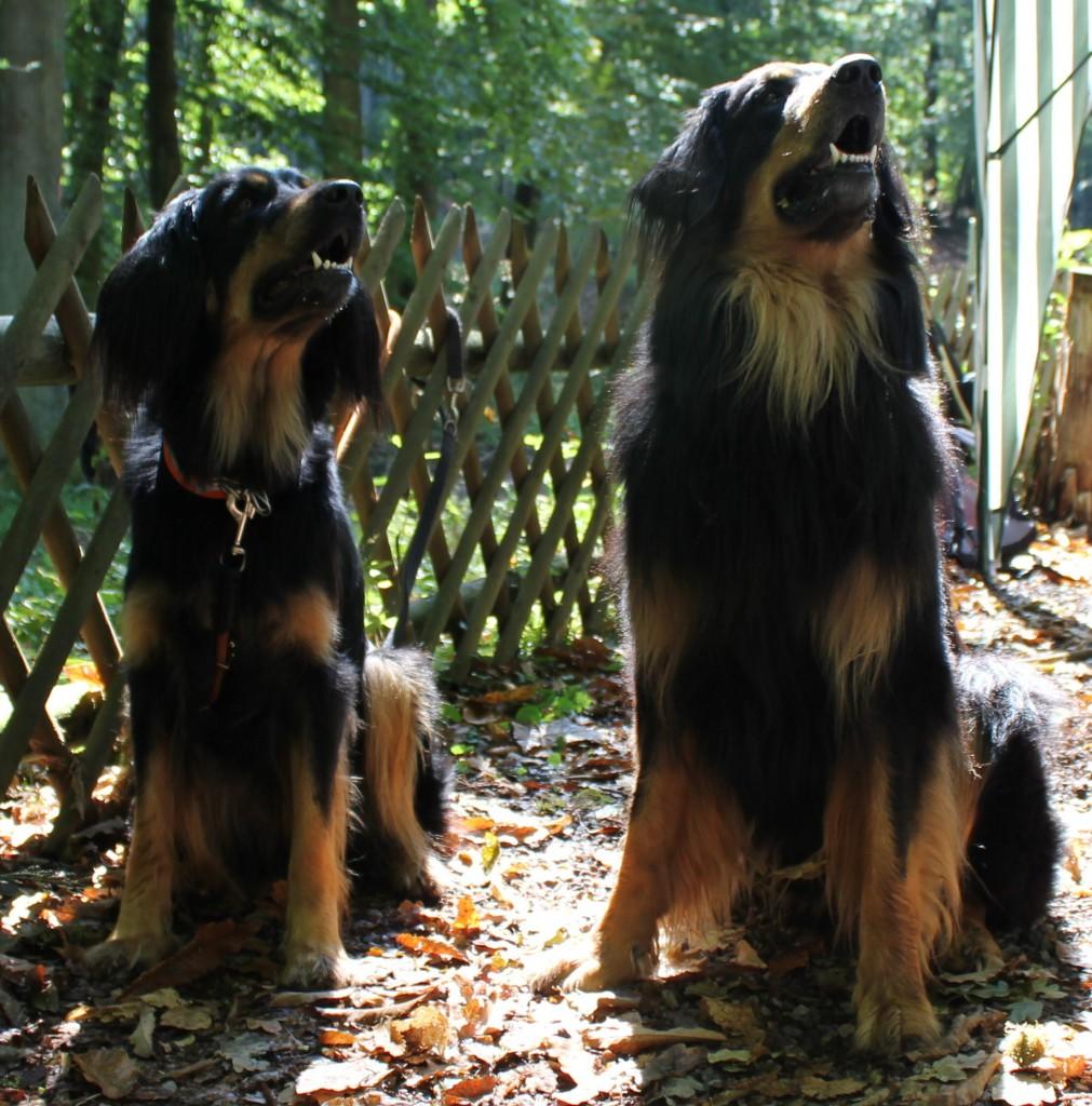 Gladys und Fedor im September 2011